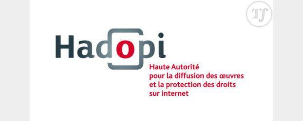 Hadopi : Piratage de films à l'Elysée