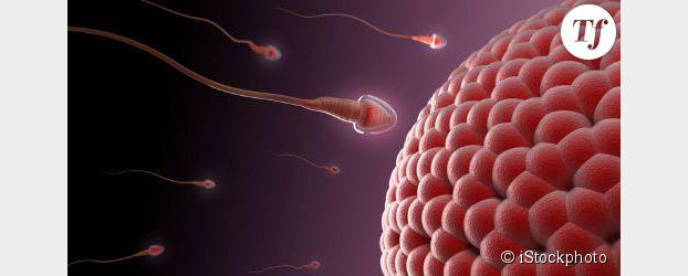 Contraception : vers une pilule pour les hommes ?