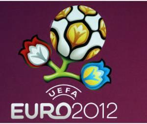 Samir Nasri insulte (encore) un journaliste lors de l'Euro 2012