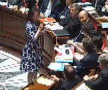 Remarques machistes à l'Assemblée sur la robe de Cécile Duflot (Vidéo)