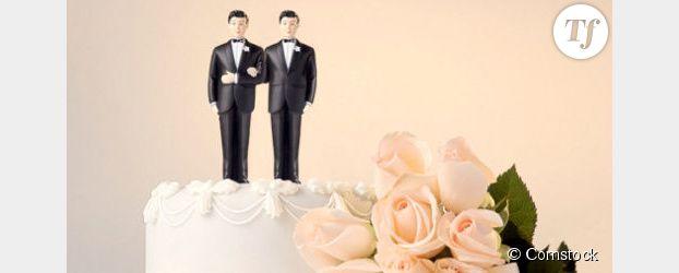 Mariage gay : les ministres adoptent le projet de loi, les associations LGBT manifestent