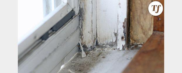 Santé : l'air intérieur n'est pas sain dans 40% des foyers