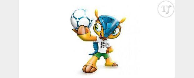 Coupe du Monde 2014 : Fuleco mascotte au Brésil - Vidéo