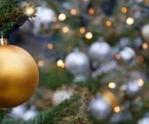 Un sapin de Noël décoré d'insectes et d'araignées