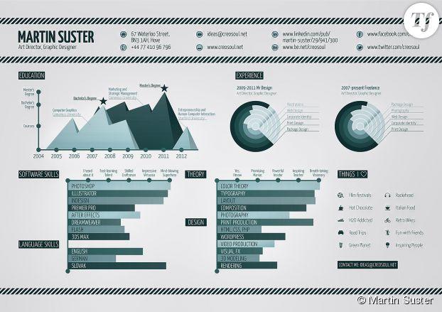 Le CV de Martin Suster