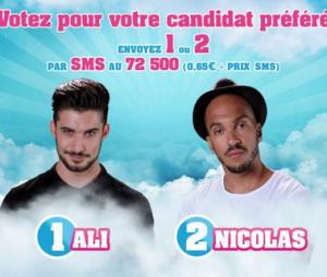 Secret Story 2015 : Nicolas éliminé, Nathalie, Eddy et Julie Ricci débarquent (replay 16 octobre)