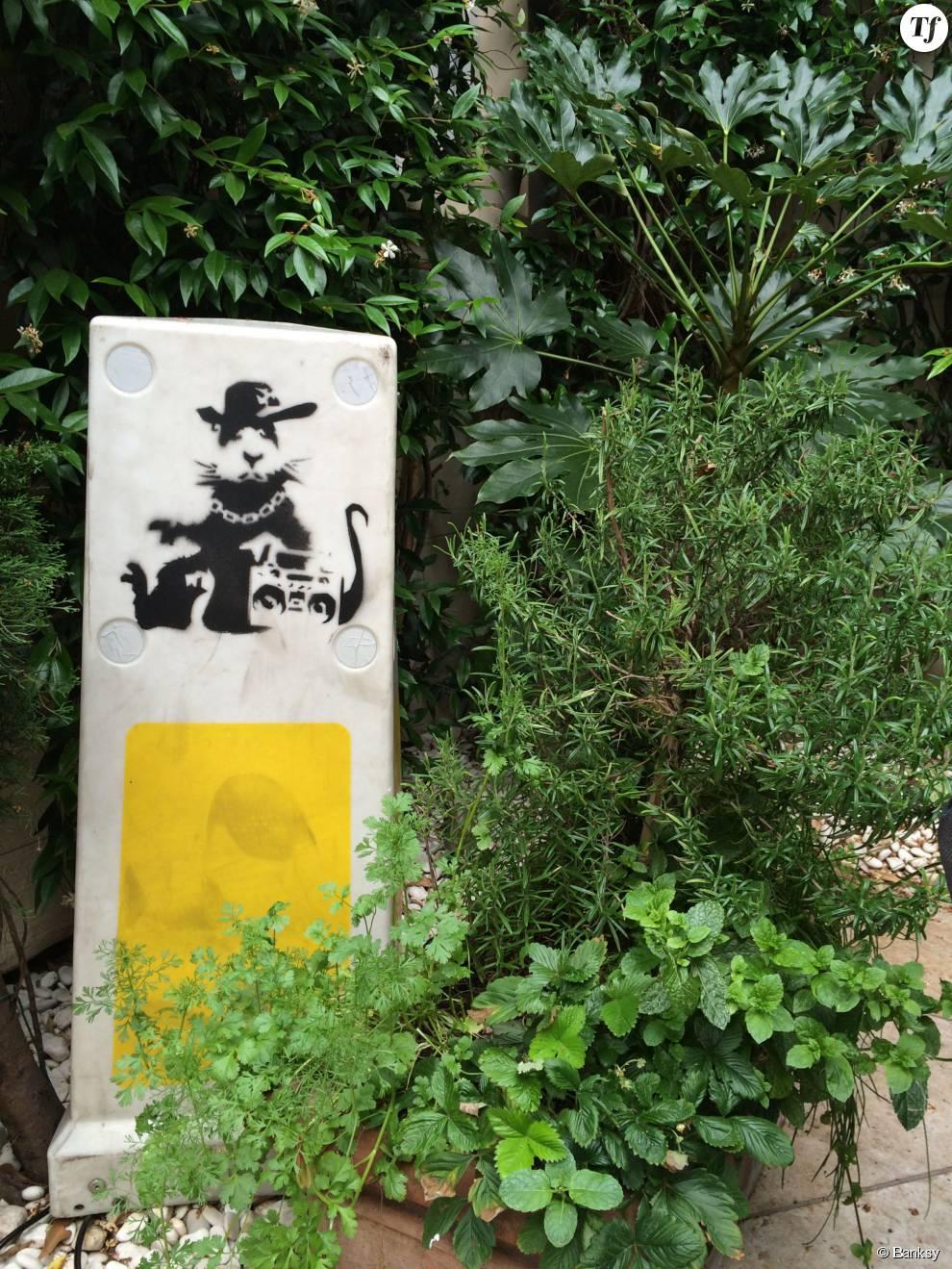 Banksy, Gangstarat