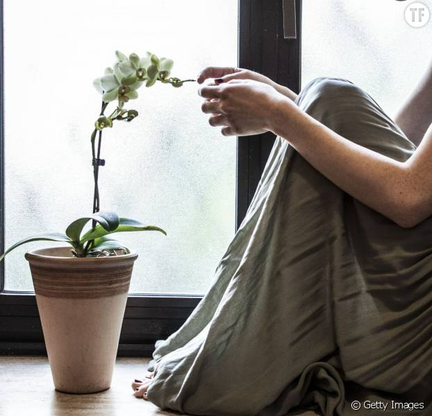 comment faire refleurir mon orchid e terrafemina. Black Bedroom Furniture Sets. Home Design Ideas