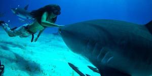 Elle est l'avocate des requins depuis ses 8 ans