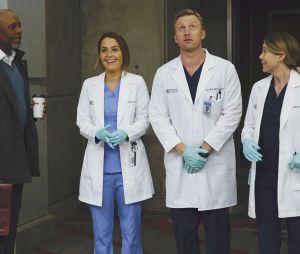 Grey's Anatomy saison 12 : quelle date de diffusion pour les prochains épisodes sur TF1 ?