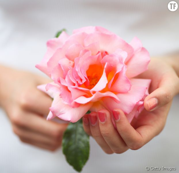 diy comment nettoyer ses vitres avec des roses du jardin terrafemina. Black Bedroom Furniture Sets. Home Design Ideas