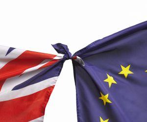 Résultats référendum Brexit : à quelle heure connaîtra-t-on les résultats du vote ?