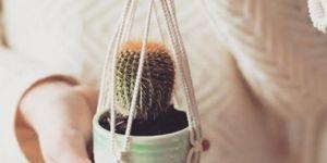DIY : comment fabriquer une suspension pour plante en macramé ?