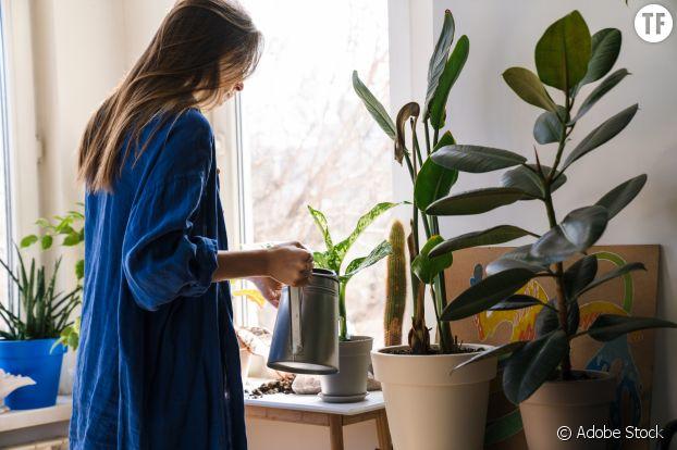 Bouteille plastique, fil de laine, plant-sitting : des astuces efficaces et pratiques