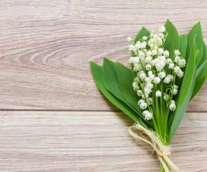 1er mai : origines et histoire de la fête du muguet et du travail
