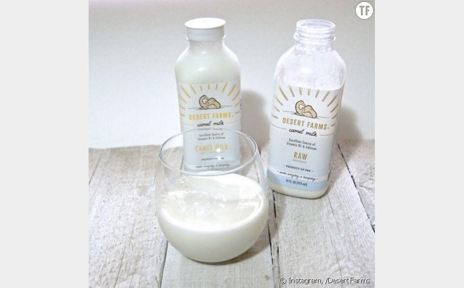 Le lait de chamelle : bon pour la santé et la peau ?