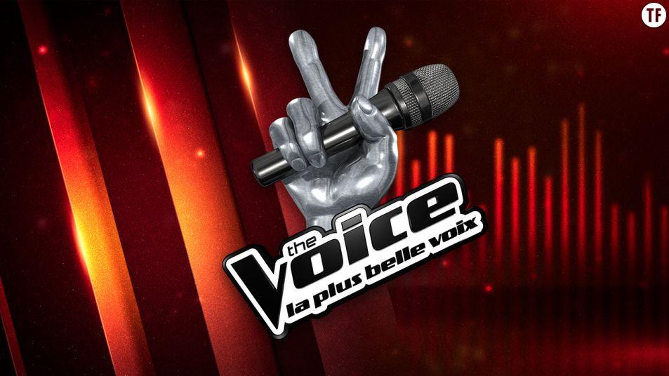 The Voice saison 6 : replay des premières  auditions à l'aveugle sur MyTF1
