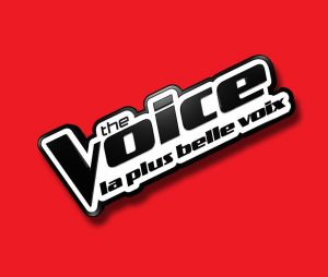 The Voice 2017 : cinquièmes auditions à l'aveugle sur TF1 Replay (18 mars)