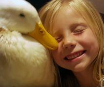 Cette fillette et ce canard sont les meilleurs amis du monde