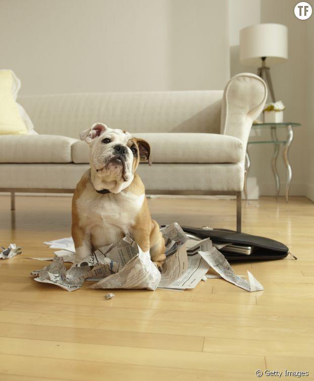 A méditer la prochaine fois qu'il boulotera notre journal
