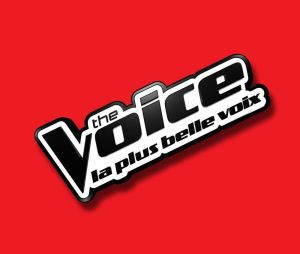 The Voice : dernières auditions à l'aveugle sur TF1 Replay (8 avril)