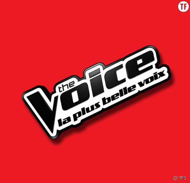 Valentin Stuff étonne avec sa voix digne de Dark Vador — The Voice