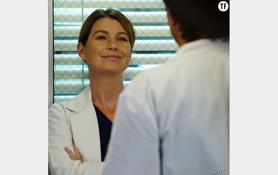 La saison 13 de Grey's Anatomy