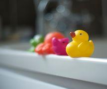 Les canards de bain sont des nids à bactéries : des chercheurs alertent