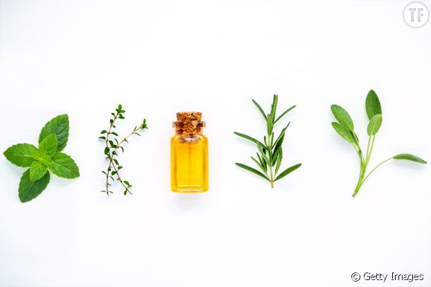 Huiles essentielles detox