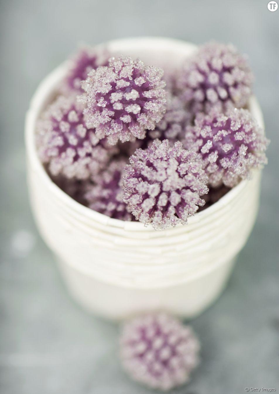 La recette du sucre au lilas