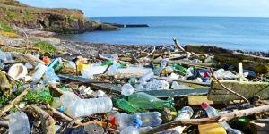 Cette Irlandaise de 11 ans milite pour éliminer les déchets des plages de son pays