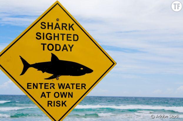"""Sur une plage australienne, un panneau lit : """"requin repéré aujourd'hui, baignade à vos risques et périls""""."""