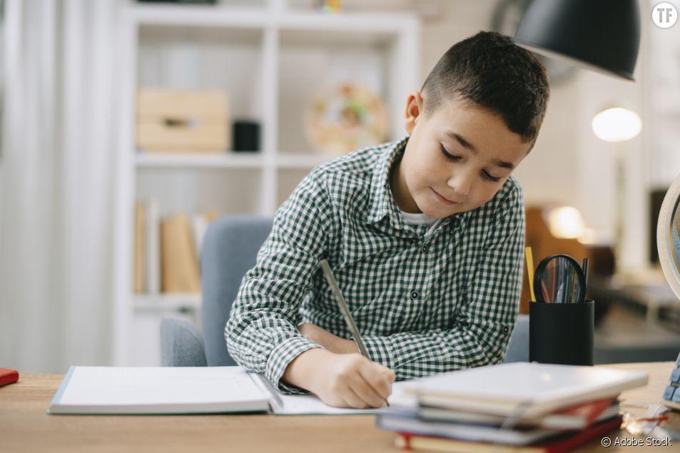 Qui sont les enfants qui font école à la maison ?