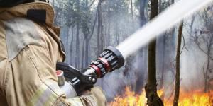 Le sperme pourrait sauver votre maison d'un incendie
