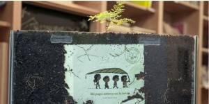 Tree Book Tree : le livre qui devient un arbre
