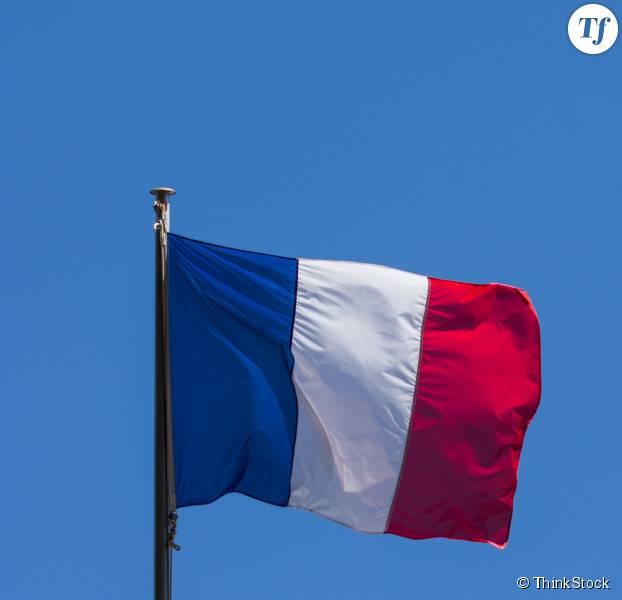 Achat drapeau france for Acheter une maison pas cher en france