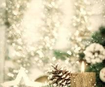 Sapins de noël 2015 pas chers : où en trouver ? (Ikea, Botanic, Truffaut...)