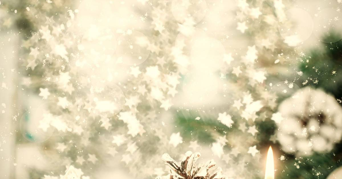 Sapins de no l 2015 pas chers o en trouver ikea - Sapin de noel pas cher naturel ...