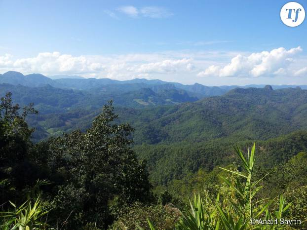 Partir pour explorer les beautés de la Thaïlande