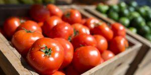 Pourquoi vous ne devriez jamais mettre vos tomates au frigo
