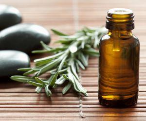 Tea tree oil : 5 utilisations étonnantes de l'huile de l'arbre à thé