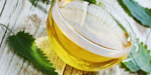 La recette du thé à l'ortie pour protéger les cheveux de l'hiver