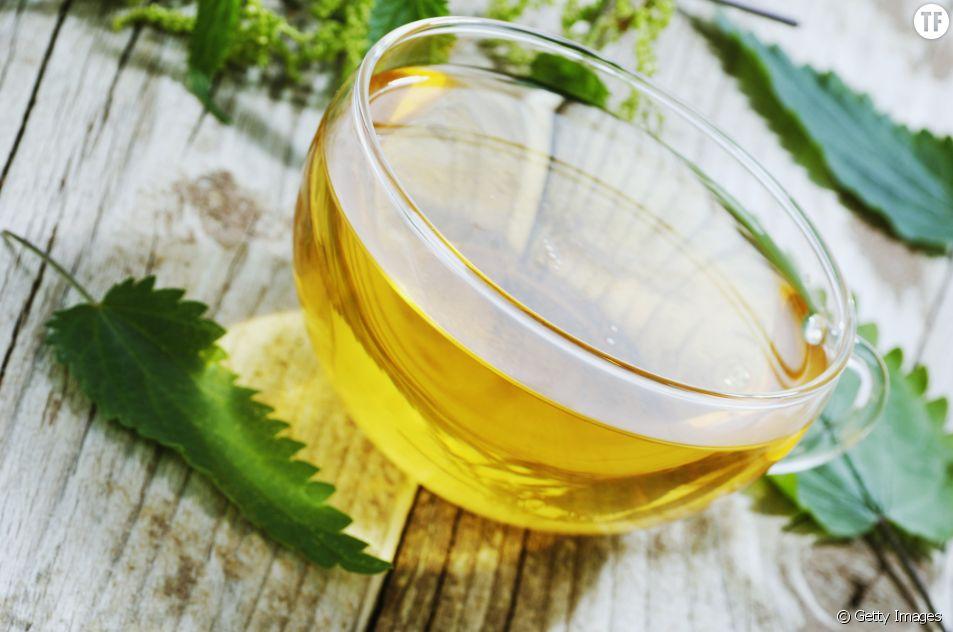 Le thé à l'ortie : un remède miracle pour votre santé et vos cheveux