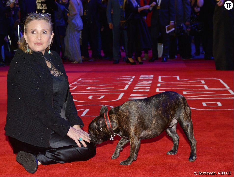 """Carrie Fisher et son chien Gary à la première de """"Star Wars : Le réveil de la force"""" à Londres le 16 décembre 2015"""
