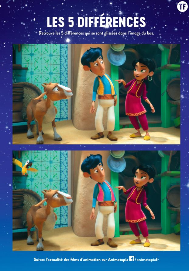 Le jeu des 5 différences Amir et Mina