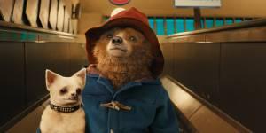 Paddington : l'ours en duffle-coat débarque en DVD