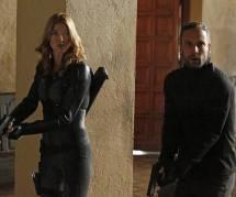 Agents of SHIELD : des informations sur la série dérivée