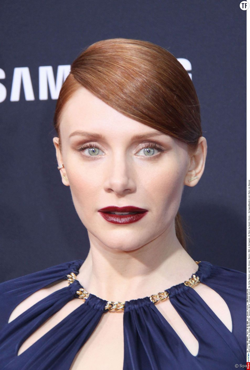 """Bryce Dallas Howard 06/09/2015 """"Jurassic World"""" Premiere held at the Dolby Theatre and TCL Chinese Theatre IMAX in Hollywood, CA Photo by Kazuki Hirata / HollywoodNewsWire.net"""