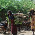 Femmes Solidaires et Gamissa ont établi un partenariat qui, depuis 2005, ambitionne de préserver l'intégrité physique des jeunes filles dans plusieurs villages.