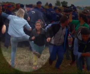 Les explications douteuses de Petra László, la journaliste cogneuse de migrants